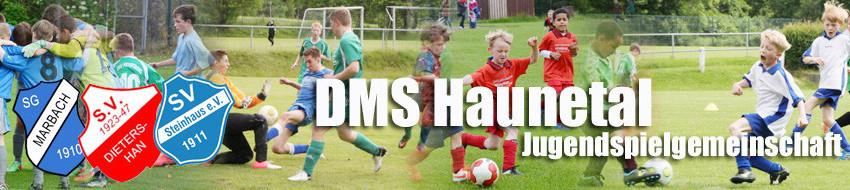 DMS_Haunetal_Header